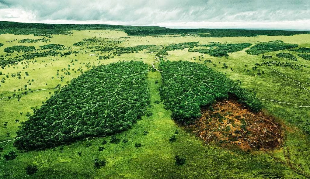 Analisis Sumber Daya Lingkungan