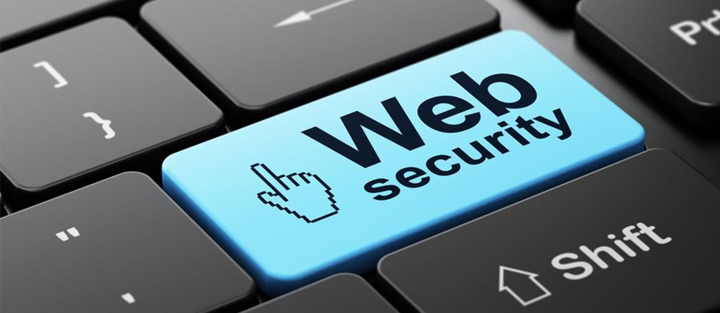 Web Security Training